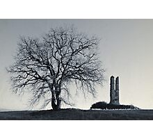 The tree and the ruin Photographic Print