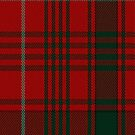 02438 Donald of Staffa's Sett Clan/Family Tartan Fabric Print Iphone Case by Detnecs2013