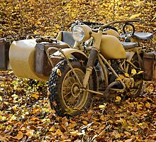 BMW R75 in autumn by Frank Kletschkus