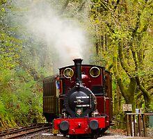 Talyllyn Railway by mlphoto
