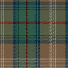 02444 Dorcas West Coast Woven Mills Fashion Tartan Fabric Print Iphone Case by Detnecs2013