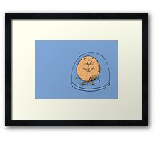 Fat mouse in a snow globe Framed Print