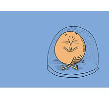 Fat mouse in a snow globe Photographic Print