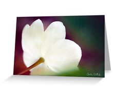 Magic Light Greeting Card