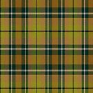 02459 Middlesex County, New Jersey E-fficial Fashion Tartan Fabric Print Iphone Case by Detnecs2013
