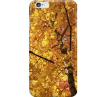 iPhone / iPod Case - Leaves (yellow) iPhone Case/Skin