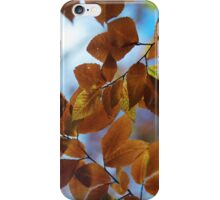 iPhone / iPod Case - Leaves (brown) iPhone Case/Skin