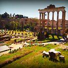 The Roman Forum by orsinico