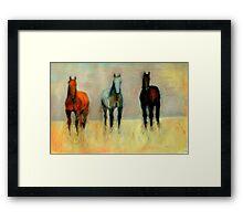 Three Horses Framed Print