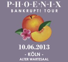 Phoenix: Bankrupt! Tour (10.06.2013 - Cologne) by Teji