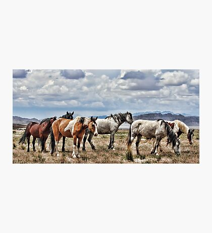 The Wild Band Photographic Print