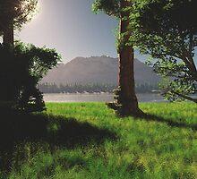 Lake Mutaka by MickCook