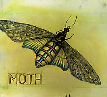 The Hawk Moth by Jenny Wood