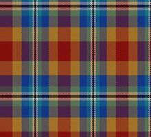 02475 Hamilton County, Ohio E-fficial Fashion Tartan Fabric Print Iphone Case by Detnecs2013