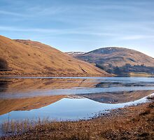 Reflections in the Loch o'the Lowes by Christine Smith