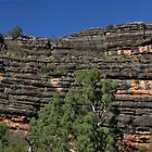 Divonian Reef @ Windjana Gorge WA by Mark Ingram Photography