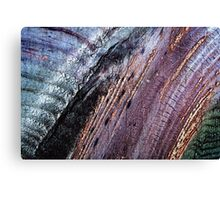 Existing Alteration  Canvas Print