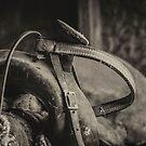 The Saddle by Adam Northam