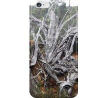 Destruction iPhone Case/Skin