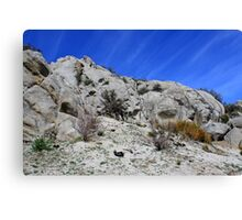 Up on Peterson Mountain,Cold Springs Reno Nevada USA Canvas Print