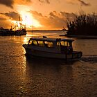 Ferry Boat at Sunrise by Shane Pinder