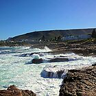 Hermanus Coast, South Africa by Robert Phelps