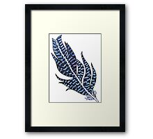 Grace Feather Framed Print