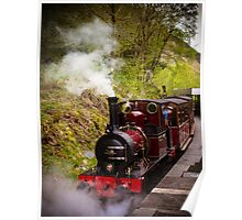 Steam Locomotive Dolgoch Poster