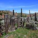 Old,Withered Gate,Reno Nevada USA by Anthony & Nancy  Leake