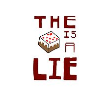The Blocky Cake is a Lie by Josh Birnbaum