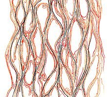 Basal by Regina Valluzzi