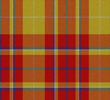 02501 Suffolk County, Massachusetts E-fficial Fashion Tartan Fabric Print Iphone Case by Detnecs2013