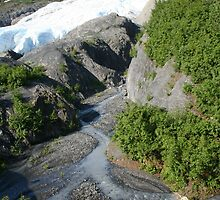 Exit Glacier by Robert Phelps