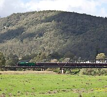 Steam Loco 3642 Paterson River, NSW Australia (Dry Brushed) by SNPenfold
