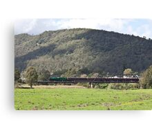Steam Loco 3642 Paterson River, NSW Australia (Dry Brushed) Canvas Print