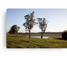 Farmlands, Buchanan NSW Australia Canvas Print