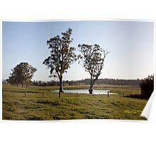 Farmlands, Buchanan NSW Australia Poster