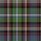 02509 Lake County, Illinois E-fficial Fashion Tartan Fabric Print Iphone Case by Detnecs2013
