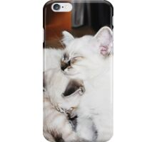 Sleeping Kittens iPhone Case/Skin