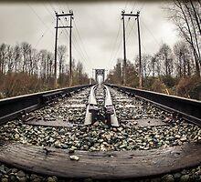 BC Tracks by Sheri Bawtinheimer