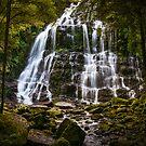 Nelson Falls by Rosie Appleton