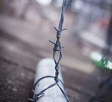 Free from the Chains of Life by ColBCadell