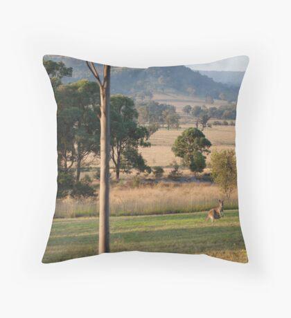 Kangaroos with their Joey -Vacy, NSW Australia Throw Pillow