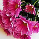 148/5-purple flowers by elvira1