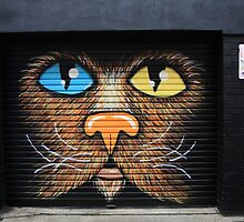 Cat graf by SharronS