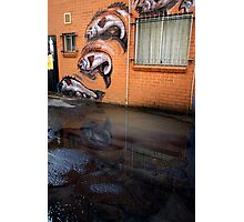 fish in a puddle Photographic Print