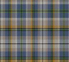 02525 Hudson County, New Jersey E-fficial Fashion Tartan Fabric Print Iphone Case by Detnecs2013