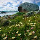 Granite Island Giant by Karen Gunn