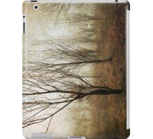 Foggy Campbell Park iPad Case/Skin