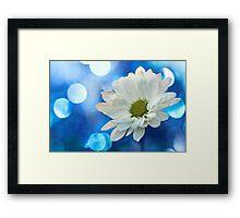 Celebrating Blue & White Framed Print